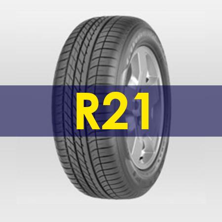 formato-rin21